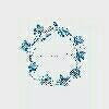 蓝花圈莼�~