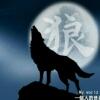 苍狼&啸月